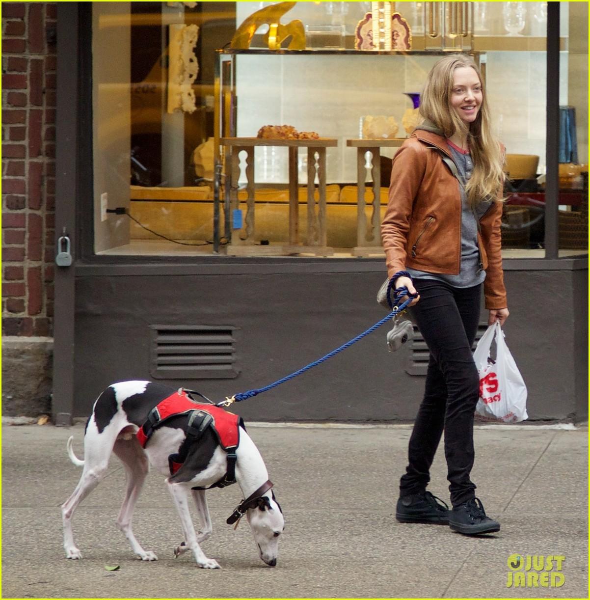 amanda seyfried halloween dog walk with male pal 052984377