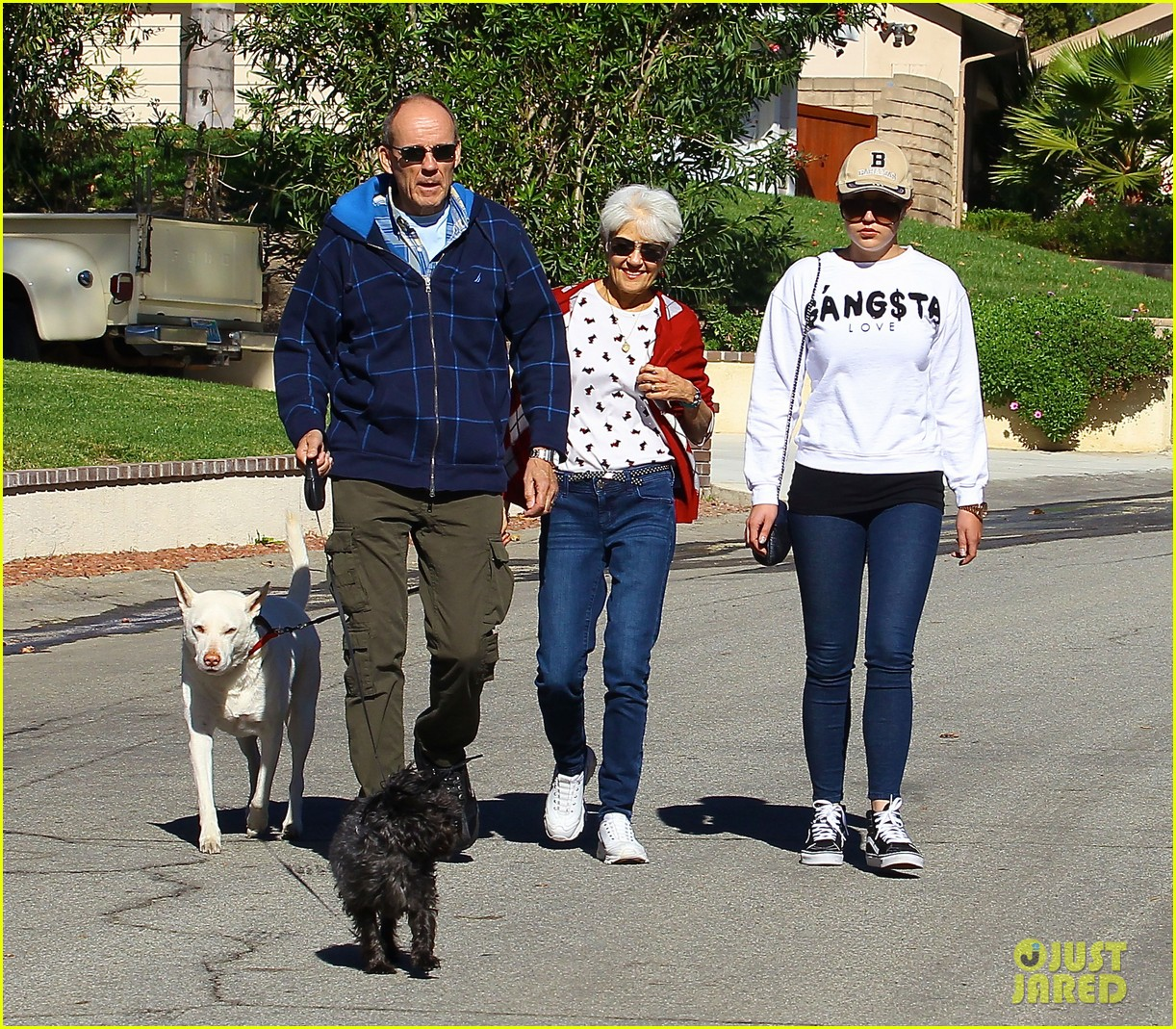 amanda bynes steps out with parents after rehab 143005711