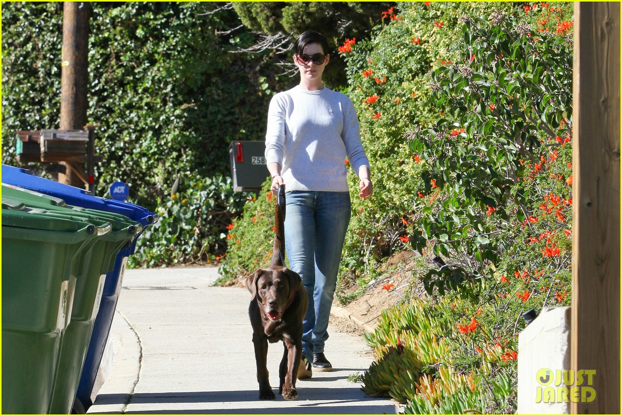 anne hathaway one of just jareds most popular actresses 093018011