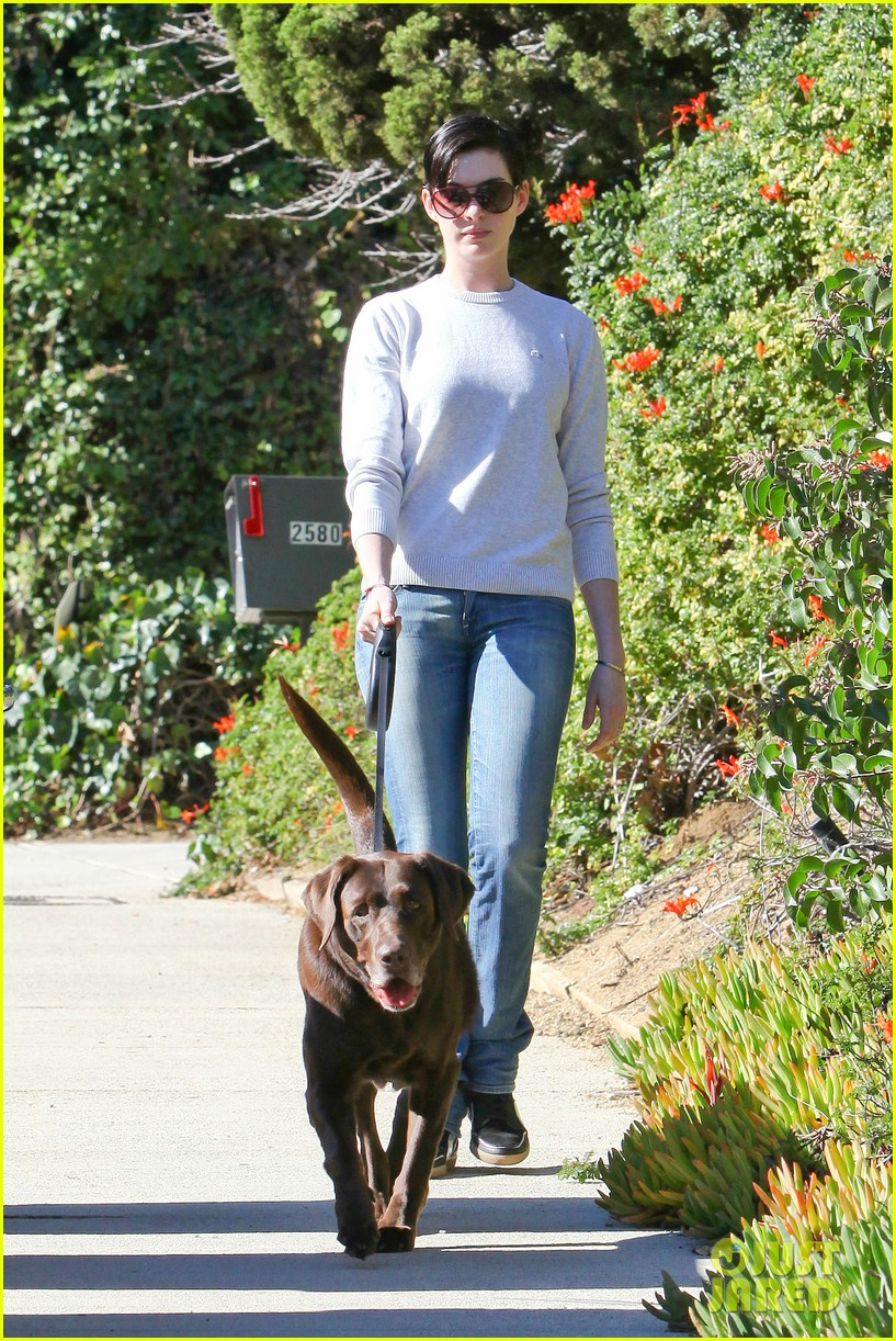 anne hathaway one of just jareds most popular actresses 103018012