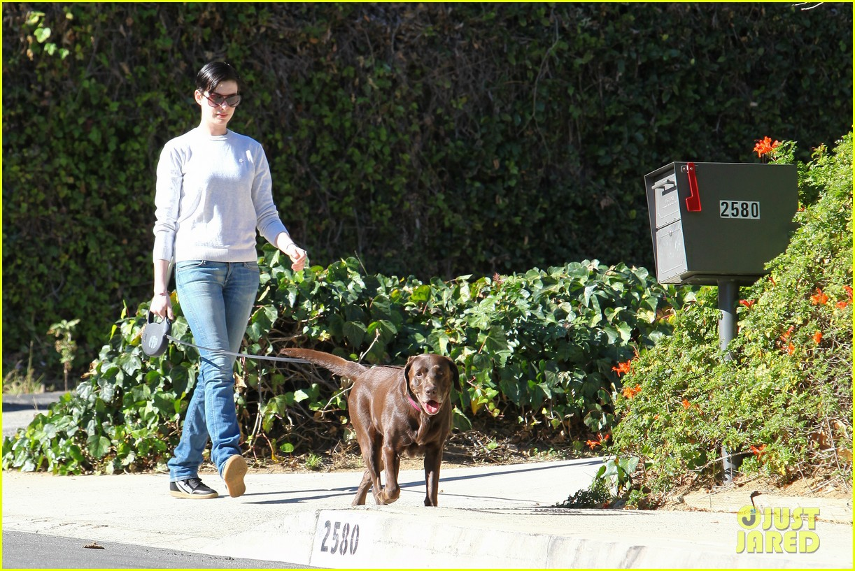 anne hathaway one of just jareds most popular actresses 163018018