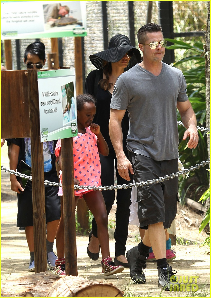 angelina jolie brad pitt visit the zoo with all six kids 023018238