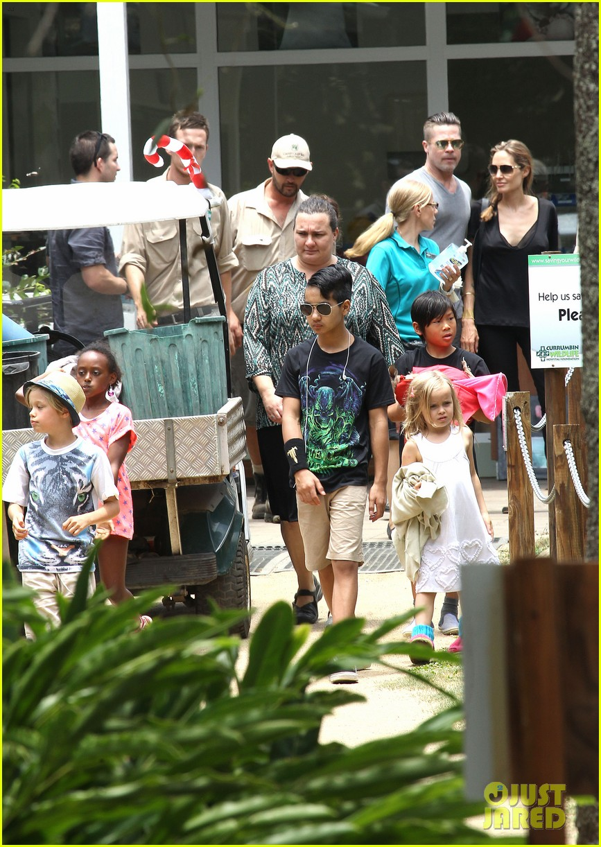 angelina jolie brad pitt visit the zoo with all six kids 053018241