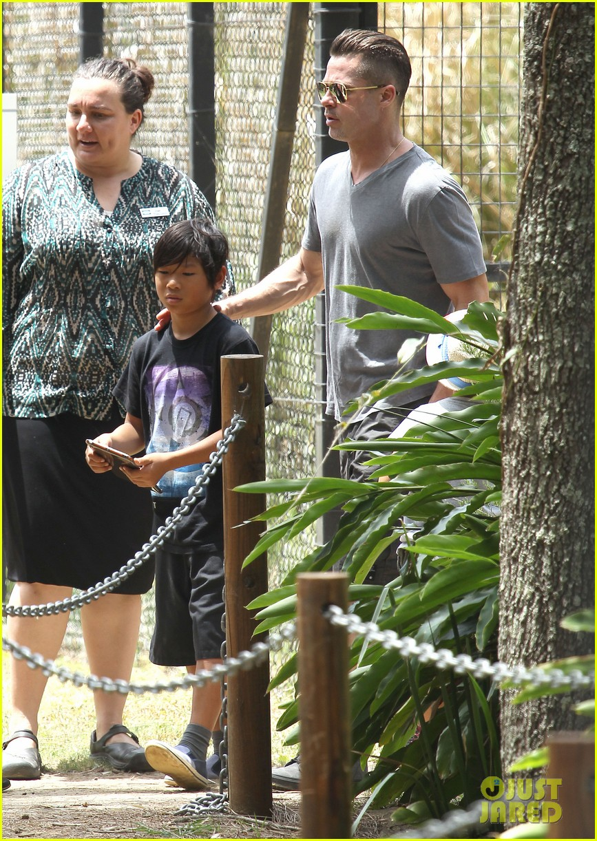 angelina jolie brad pitt visit the zoo with all six kids 063018242