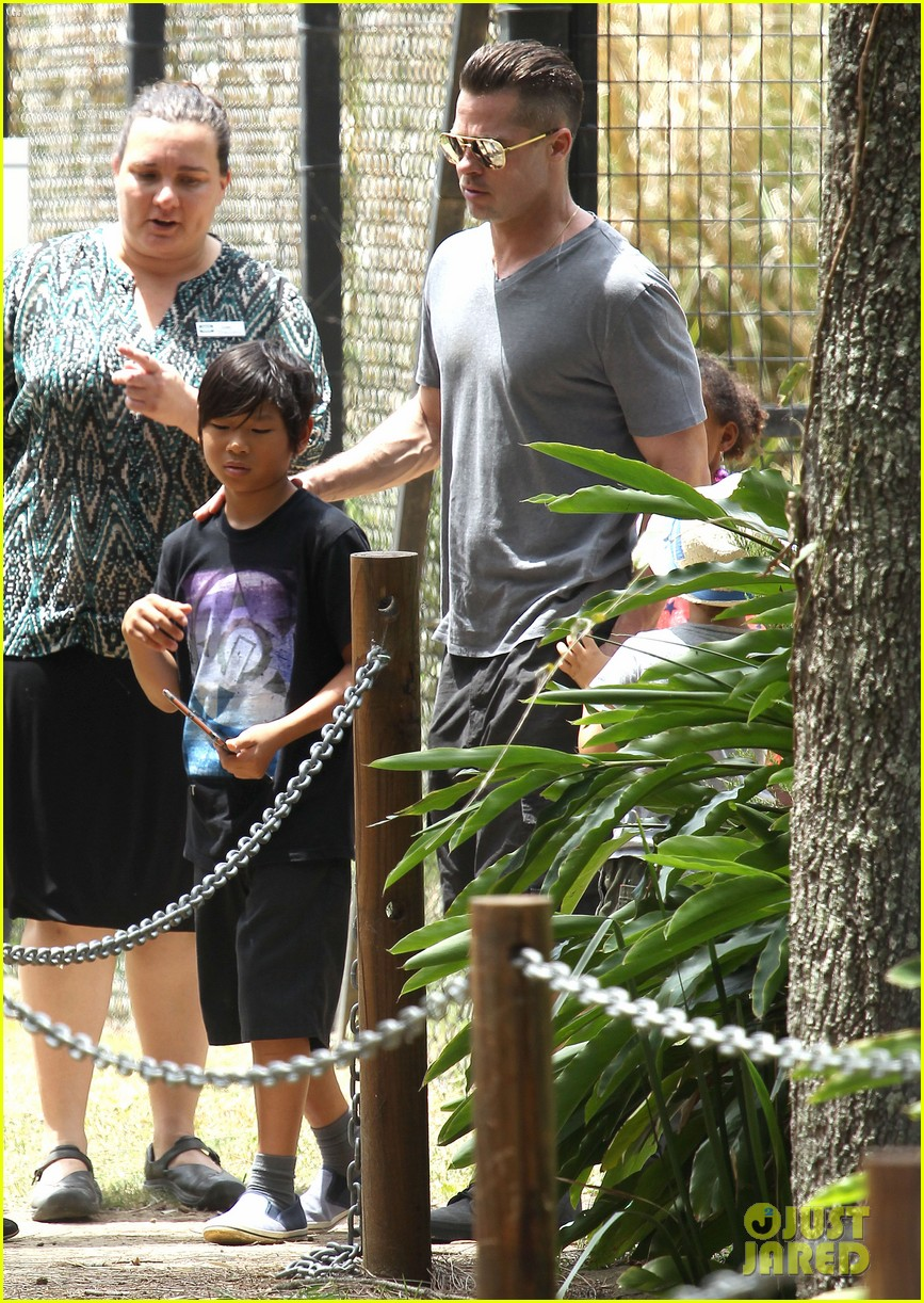 angelina jolie brad pitt visit the zoo with all six kids 073018243