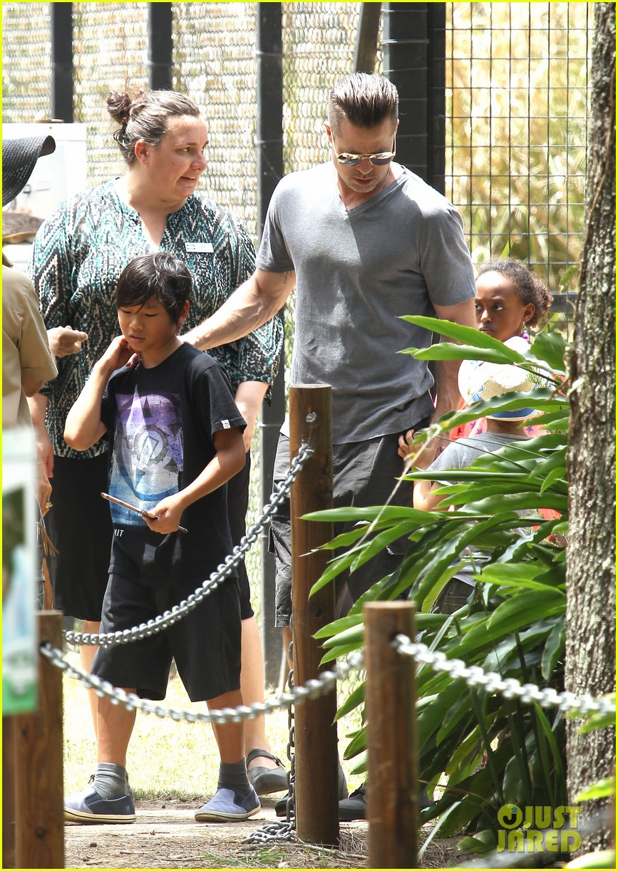angelina jolie brad pitt visit the zoo with all six kids 083018244