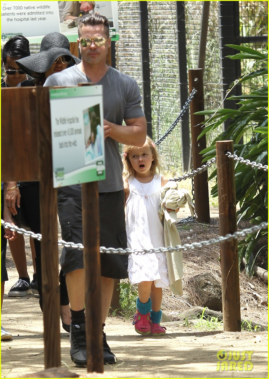 angelina jolie brad pitt visit the zoo with all six kids 103018246