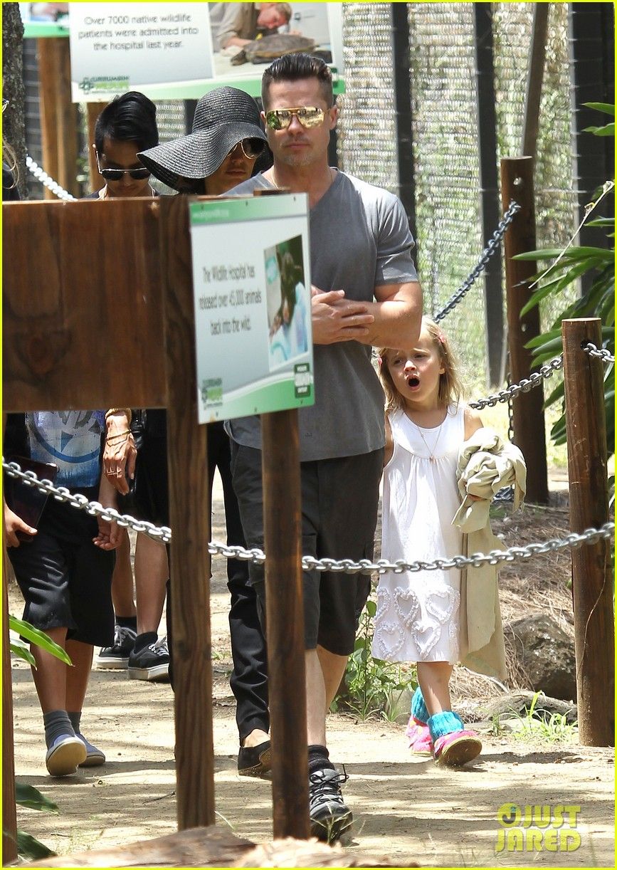angelina jolie brad pitt visit the zoo with all six kids 113018247