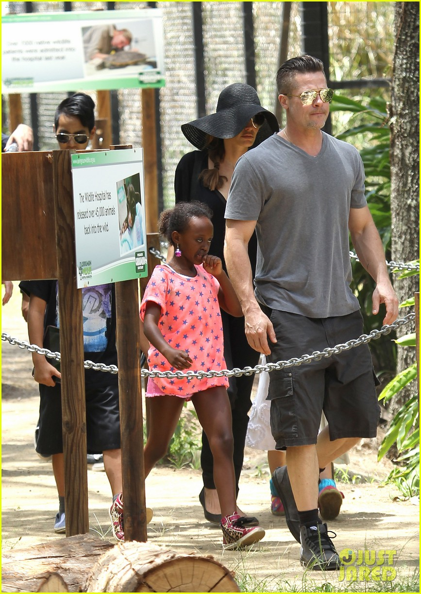 angelina jolie brad pitt visit the zoo with all six kids 133018249
