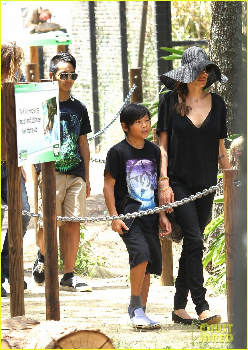 angelina jolie brad pitt visit the zoo with all six kids 153018251