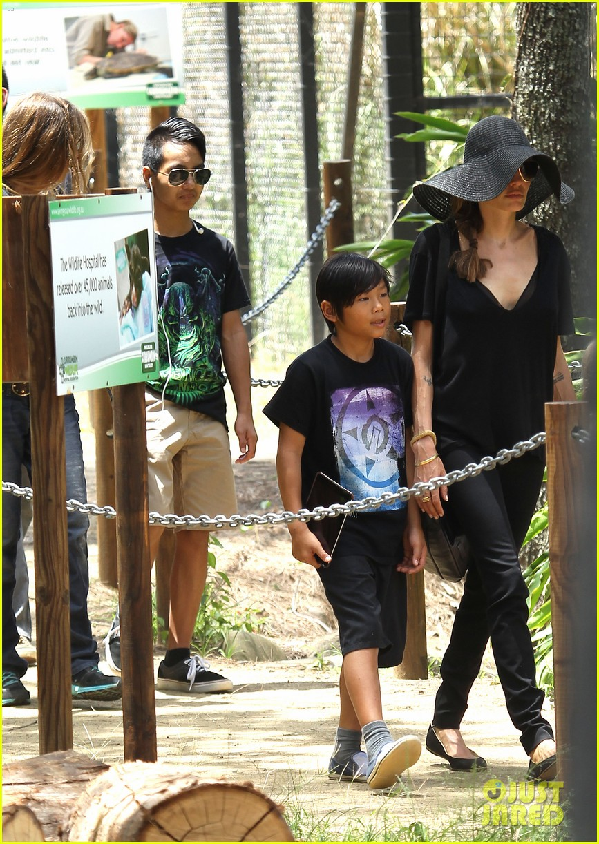 angelina jolie brad pitt visit the zoo with all six kids 163018252