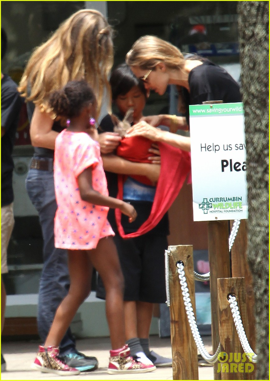 angelina jolie brad pitt visit the zoo with all six kids 473018283