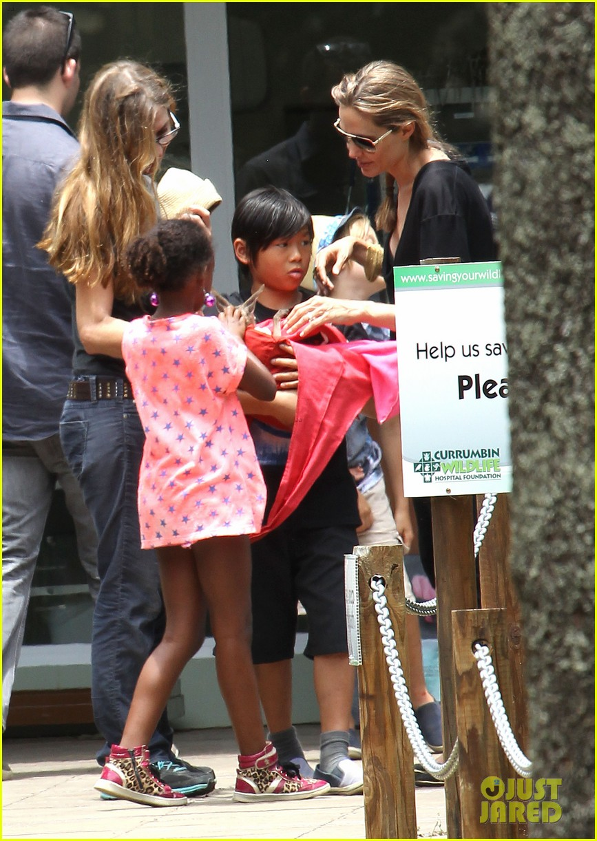 angelina jolie brad pitt visit the zoo with all six kids 493018285