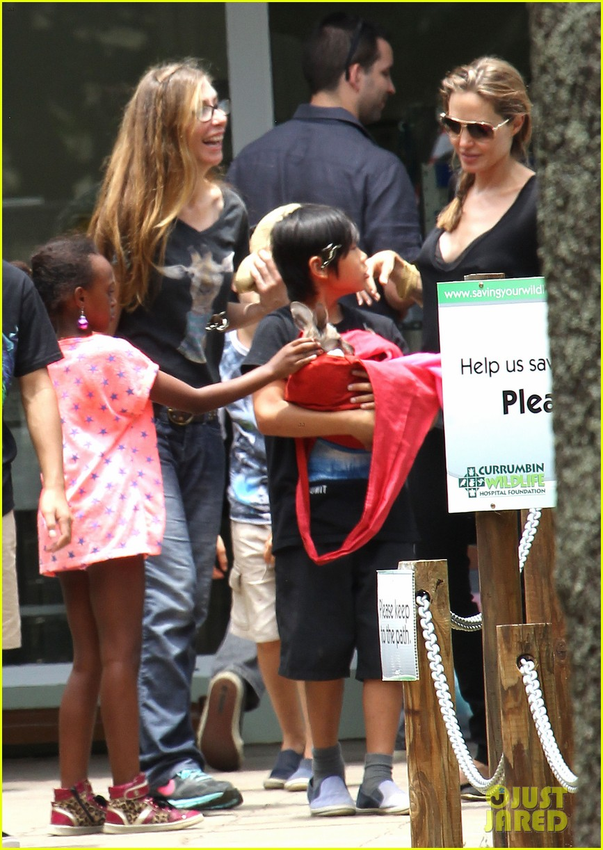 angelina jolie brad pitt visit the zoo with all six kids 513018287