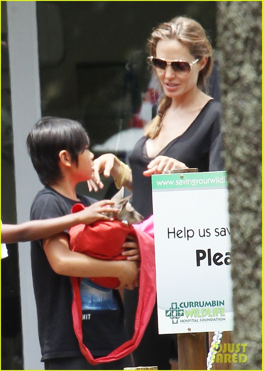 angelina jolie brad pitt visit the zoo with all six kids 523018288