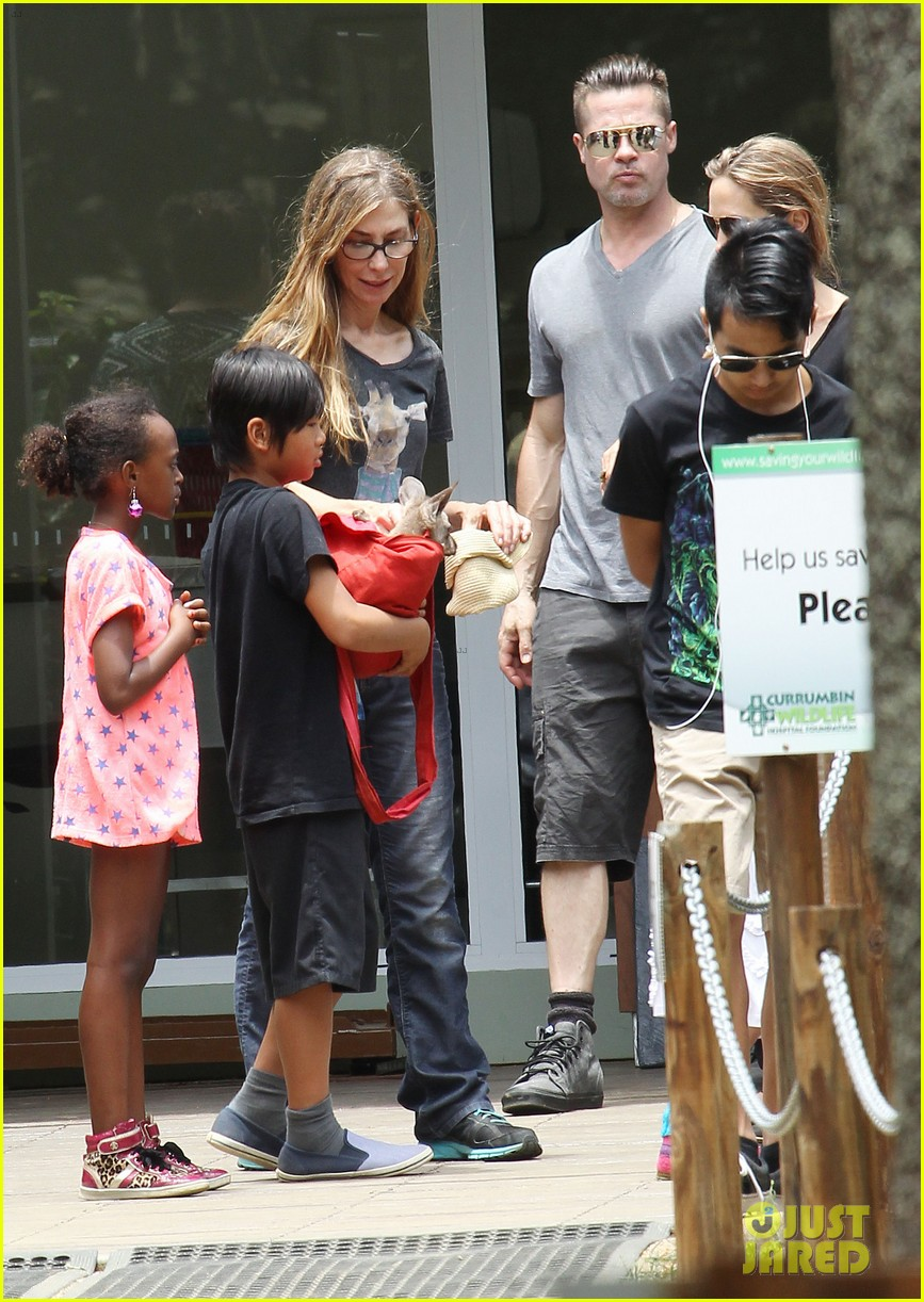 angelina jolie brad pitt visit the zoo with all six kids 553018291