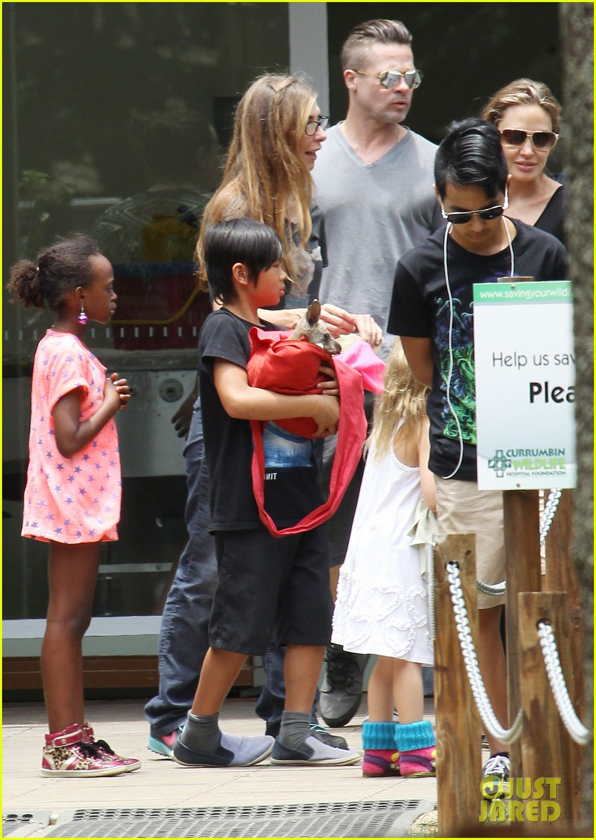 angelina jolie brad pitt visit the zoo with all six kids 57