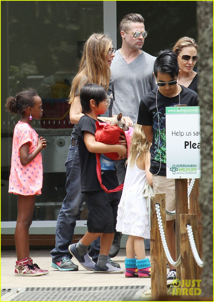 angelina jolie brad pitt visit the zoo with all six kids 583018294