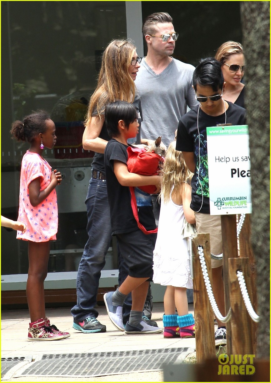 angelina jolie brad pitt visit the zoo with all six kids 593018295