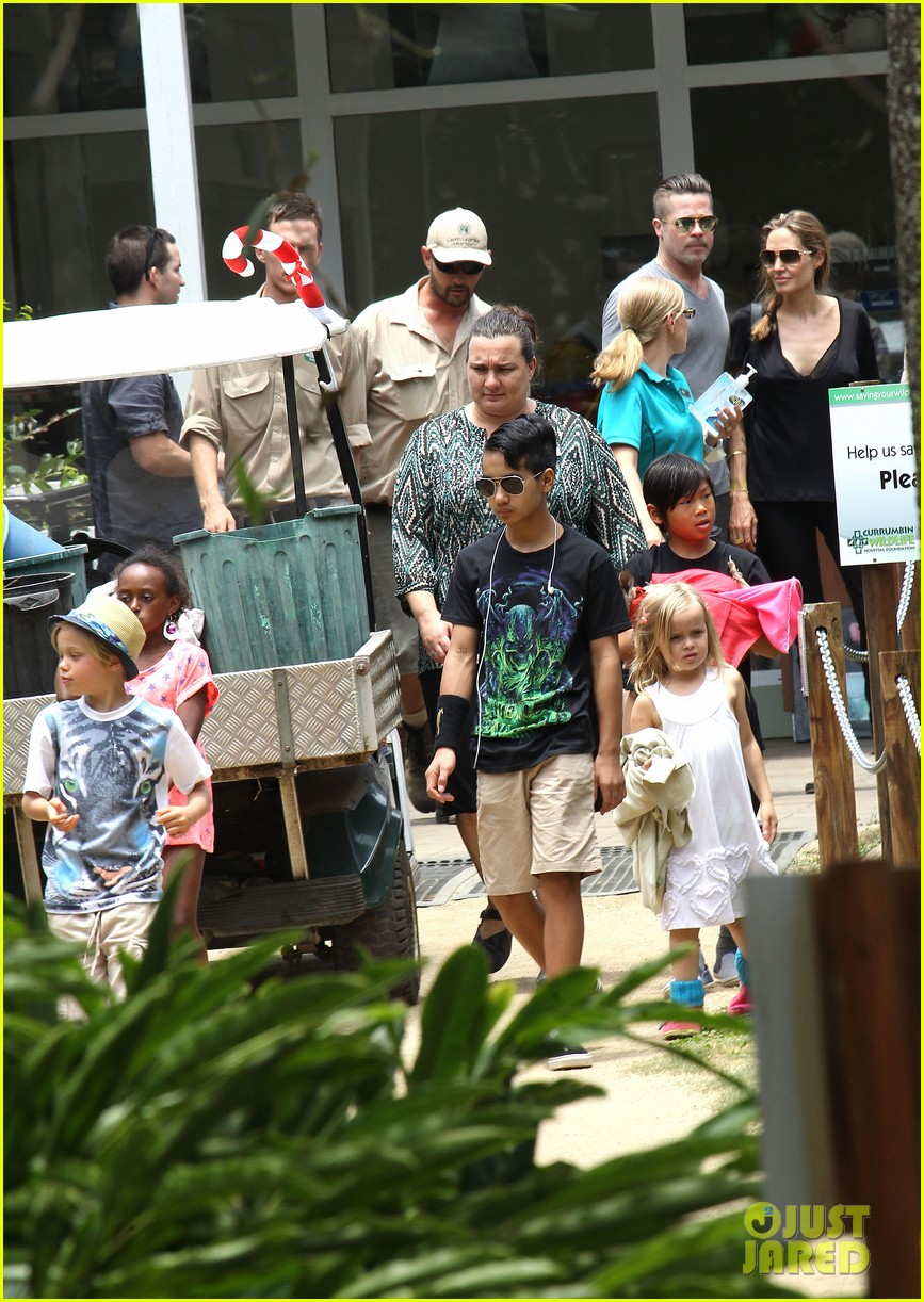 angelina jolie brad pitt visit the zoo with all six kids 663018302