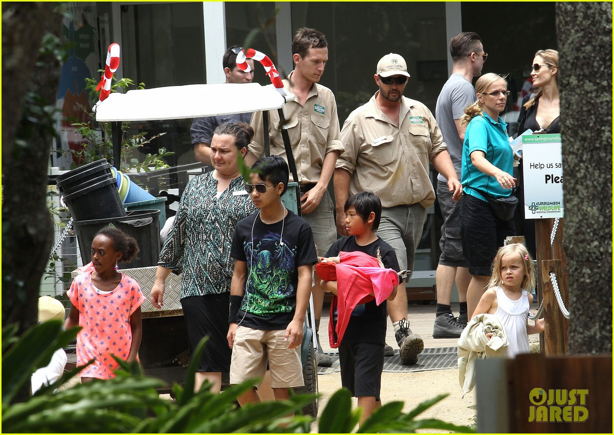 angelina jolie brad pitt visit the zoo with all six kids 703018306