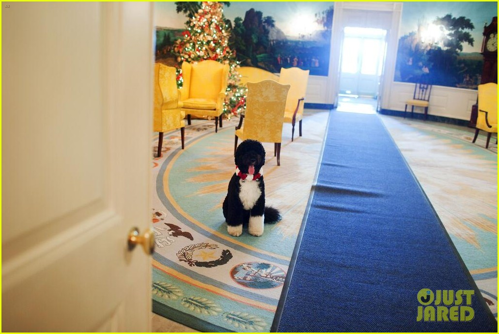 president michelle obama share christmas photos 02