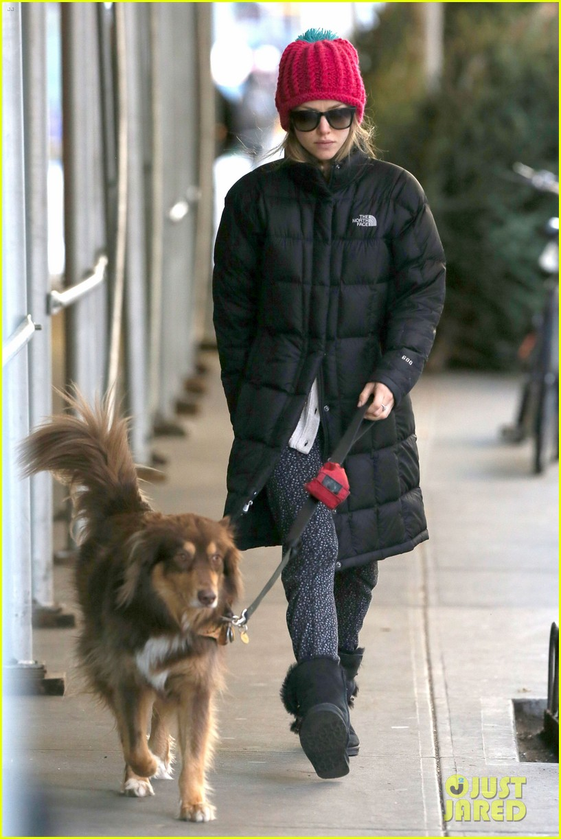 amanda seyfried monday morning dog walk with finn 023012973