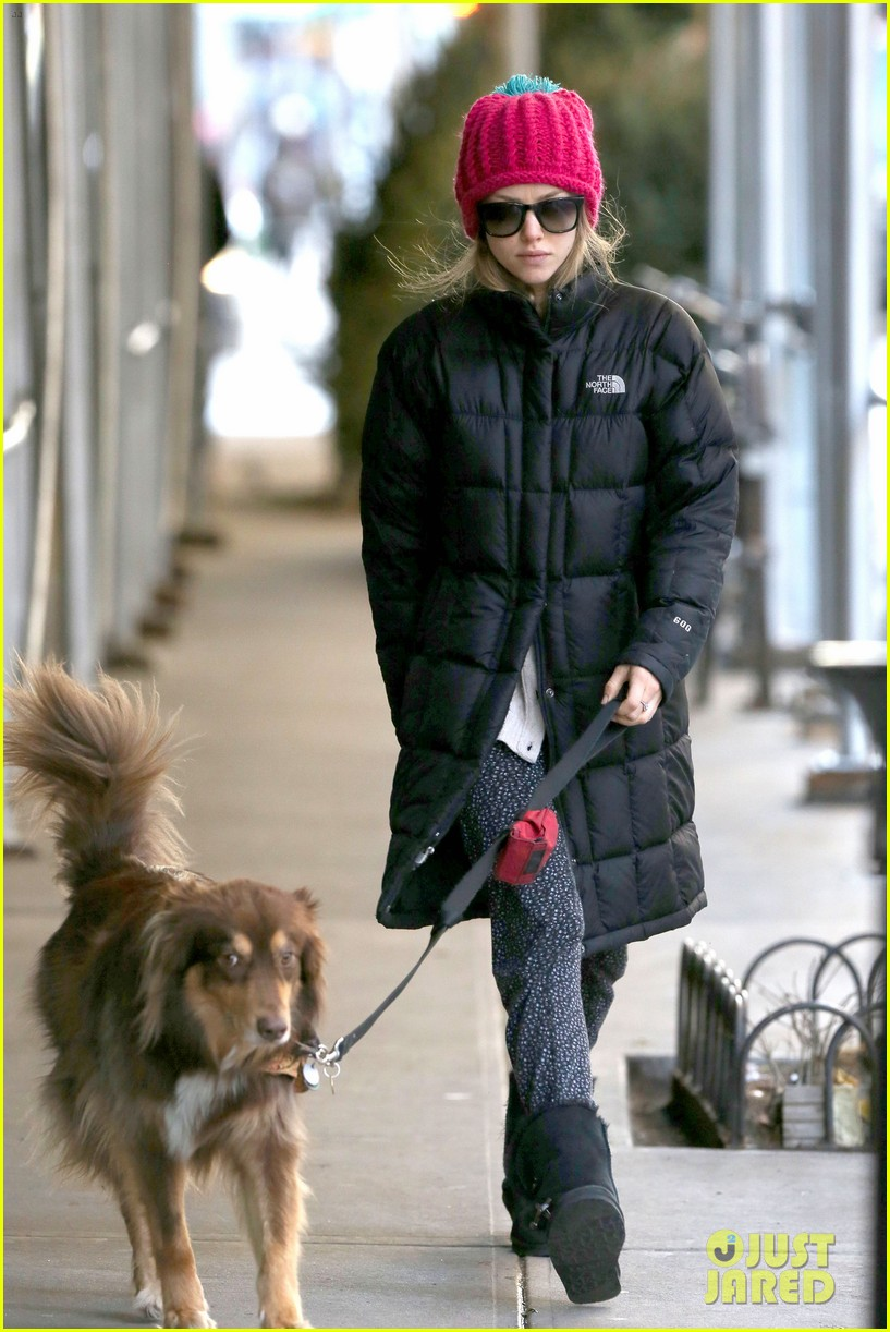 amanda seyfried monday morning dog walk with finn 063012977
