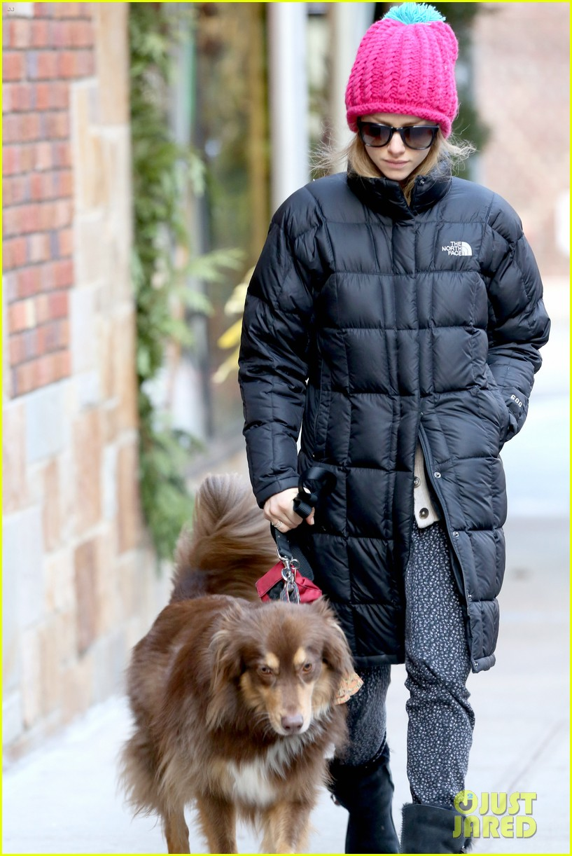 amanda seyfried monday morning dog walk with finn 083012979