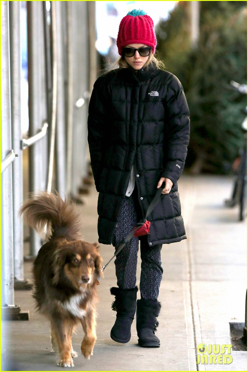 amanda seyfried monday morning dog walk with finn 103012981