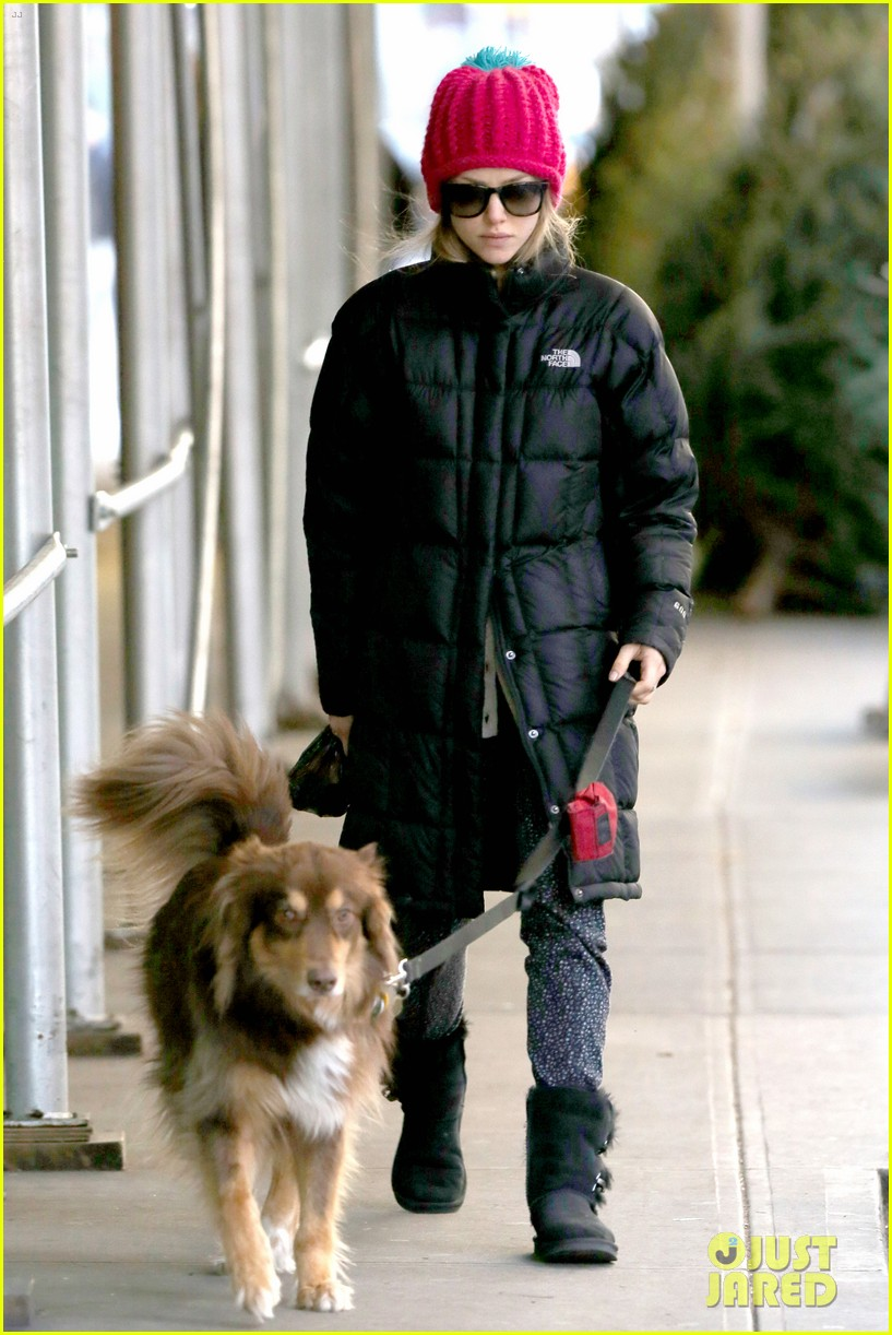 amanda seyfried monday morning dog walk with finn 113012982