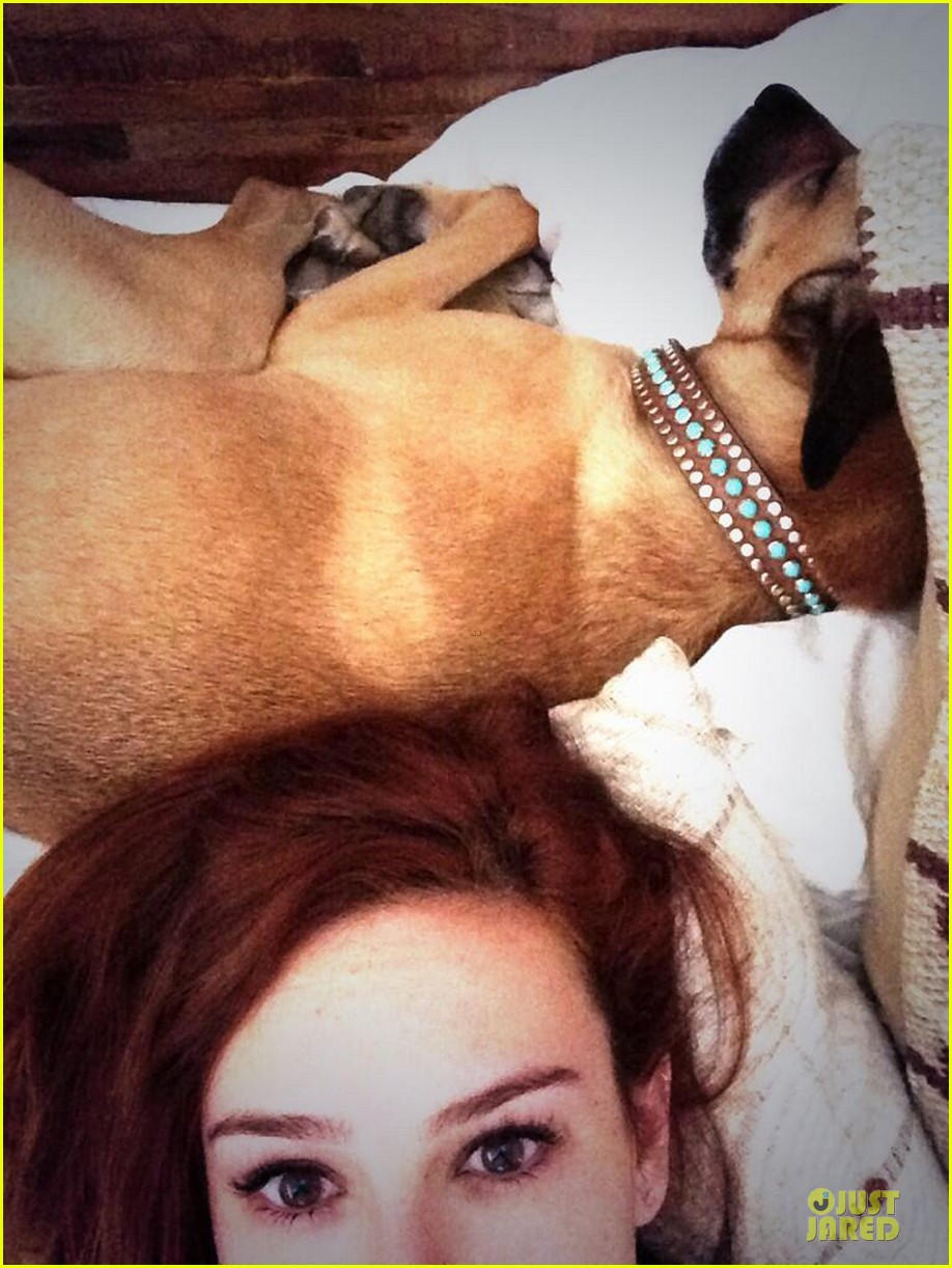 rumer willis i just really wanna curl up with my pups 053011578