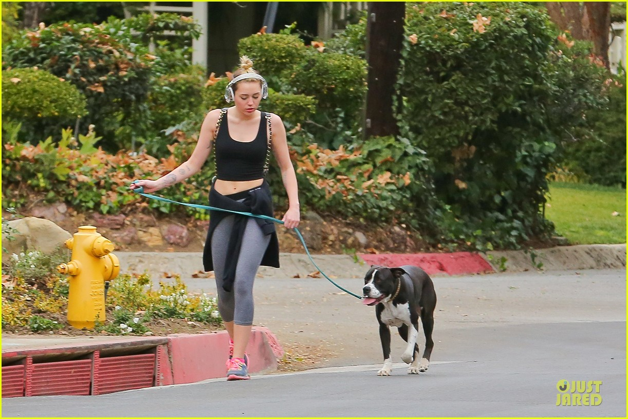 miley cyrus bares midriff for mary jane 063024609