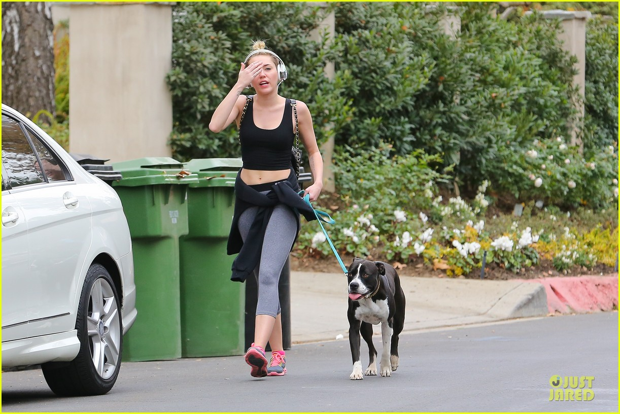 miley cyrus bares midriff for mary jane 243024627
