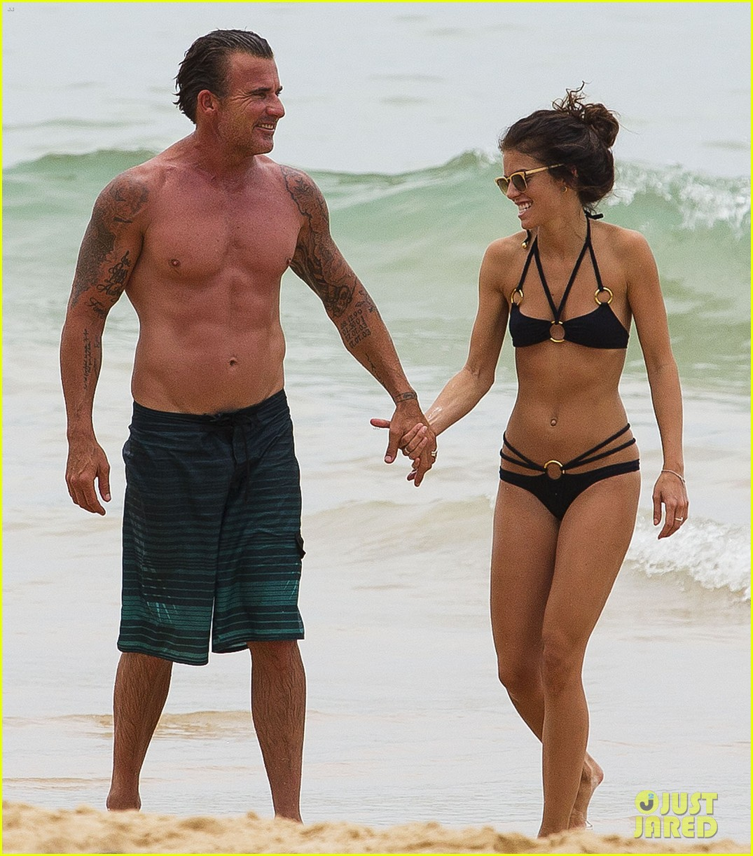 annalynne mccord bikini beach babe with shirtless dominic purcell 023021346