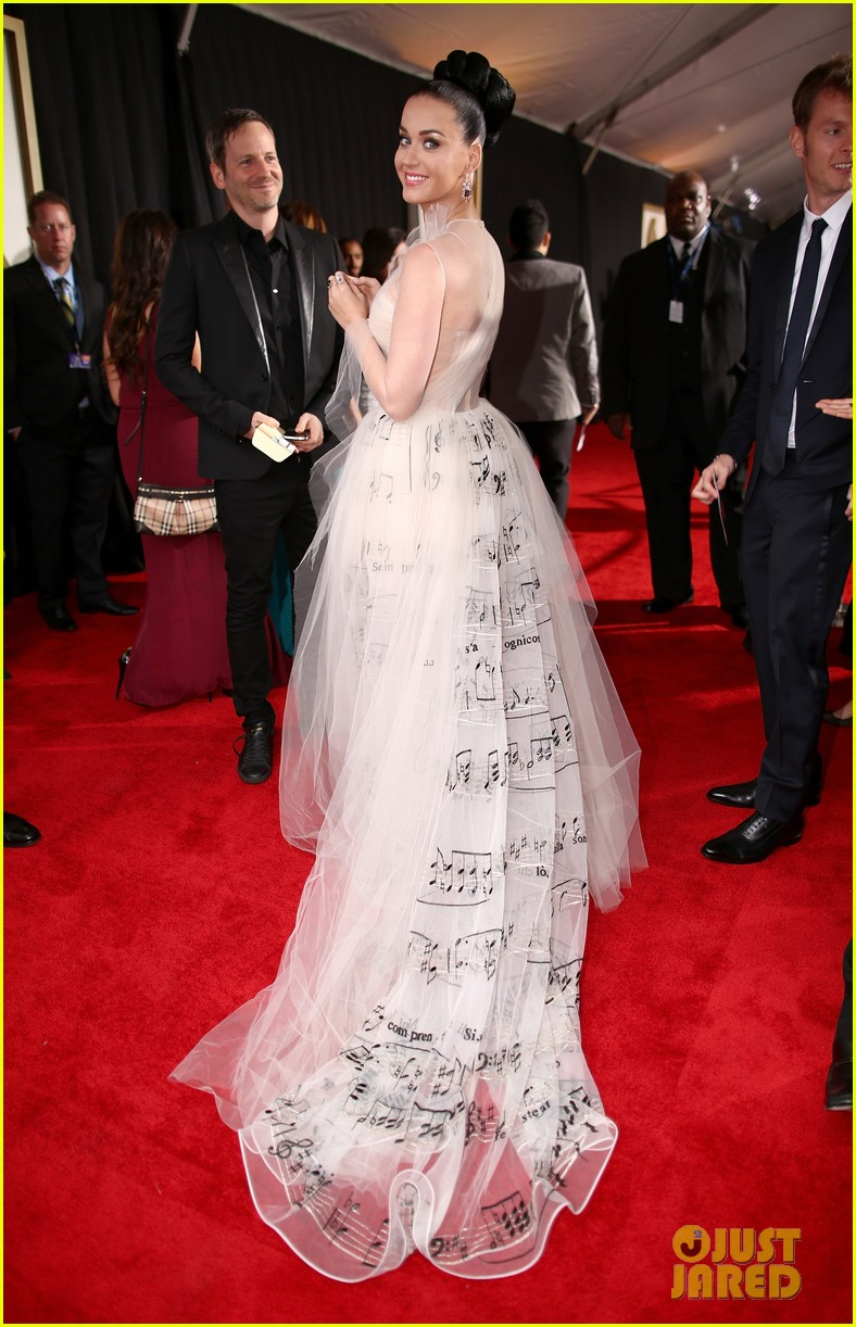 katy perry grammys 2014 red carpet 083041047