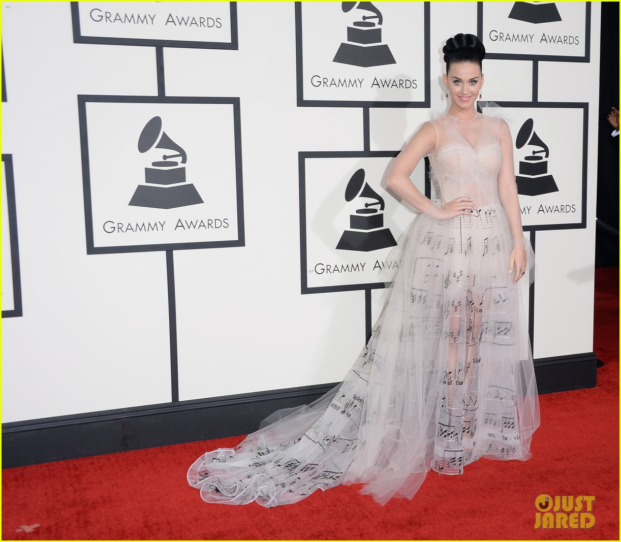 katy perry grammys 2014 red carpet 243041063