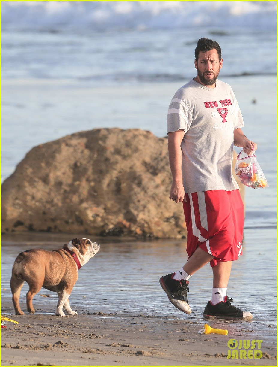 adam sandler back on west coast after hawaii trip 183022036
