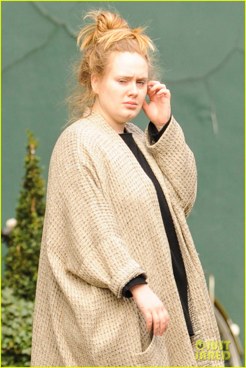 adele makes rare public appearance while shopping sans makeup 043057157
