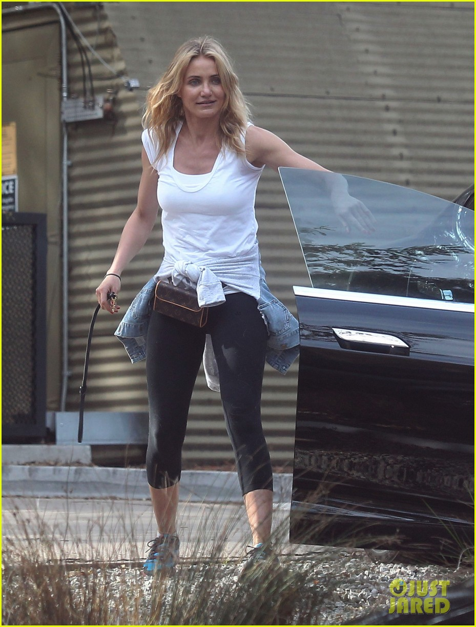 cameron diaz nicole richie walk their dogs together 053059693