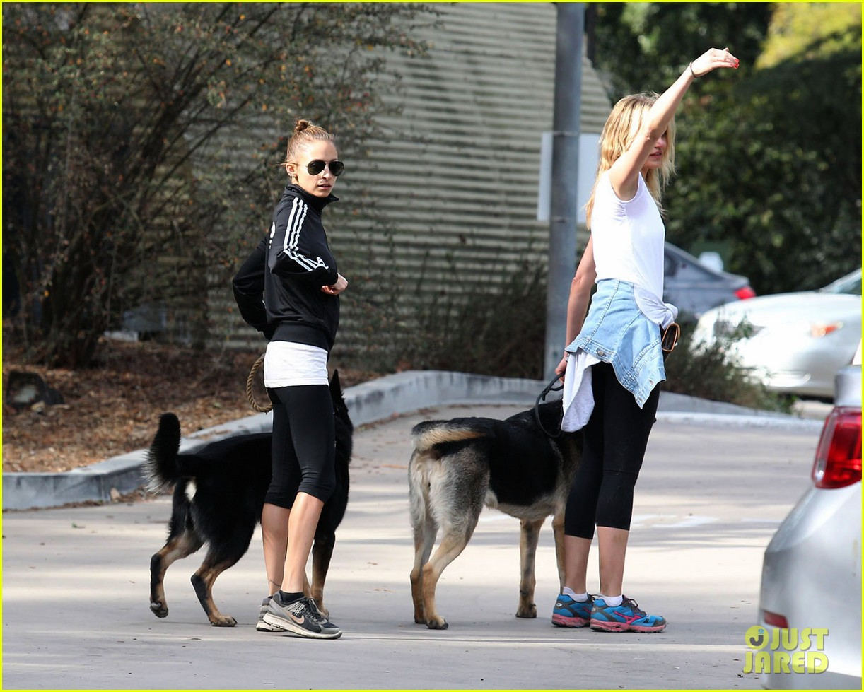 cameron diaz nicole richie walk their dogs together 093059697