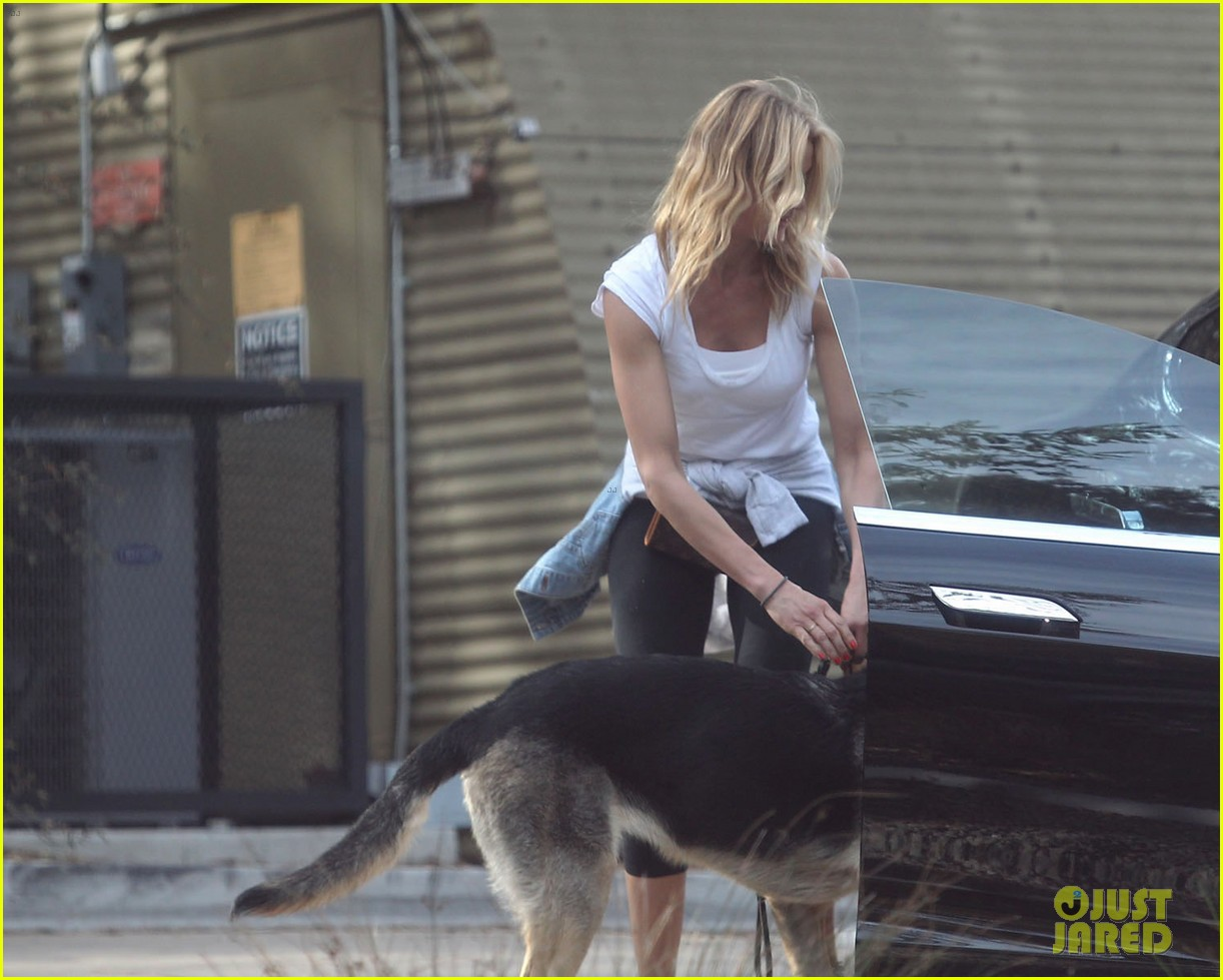 cameron diaz nicole richie walk their dogs together 123059700