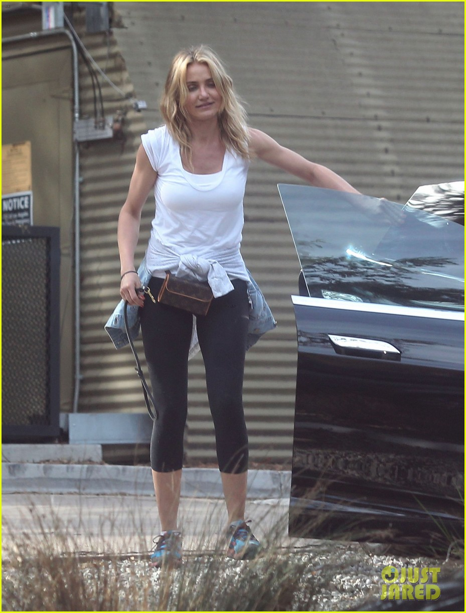 cameron diaz nicole richie walk their dogs together 143059702