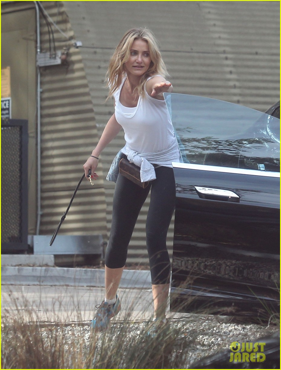 cameron diaz nicole richie walk their dogs together 153059703