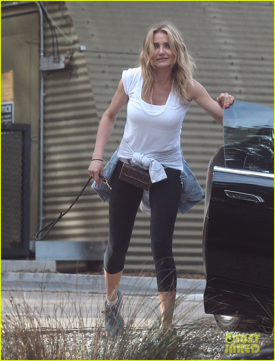 cameron diaz nicole richie walk their dogs together 163059704