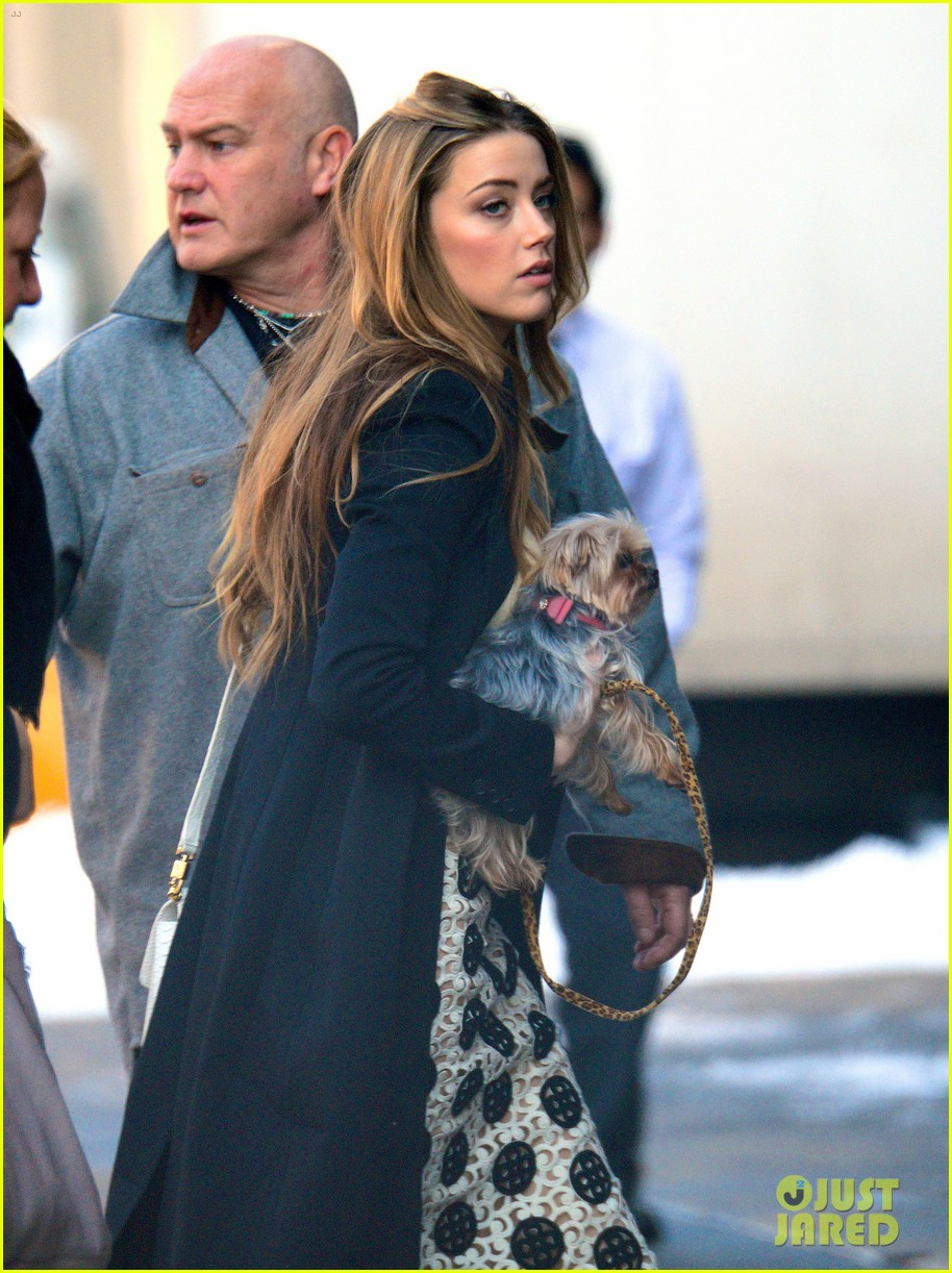 amber heard steps out sans johnny depp on valentines day 073054106