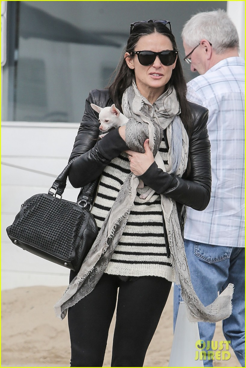 demi moore takes her tiny dog to yoga class 023051306
