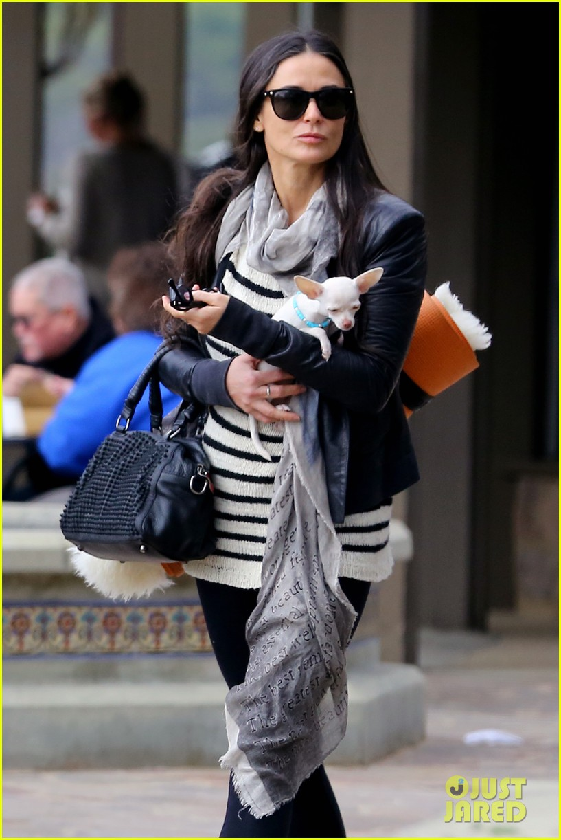 demi moore takes her tiny dog to yoga class 103051314