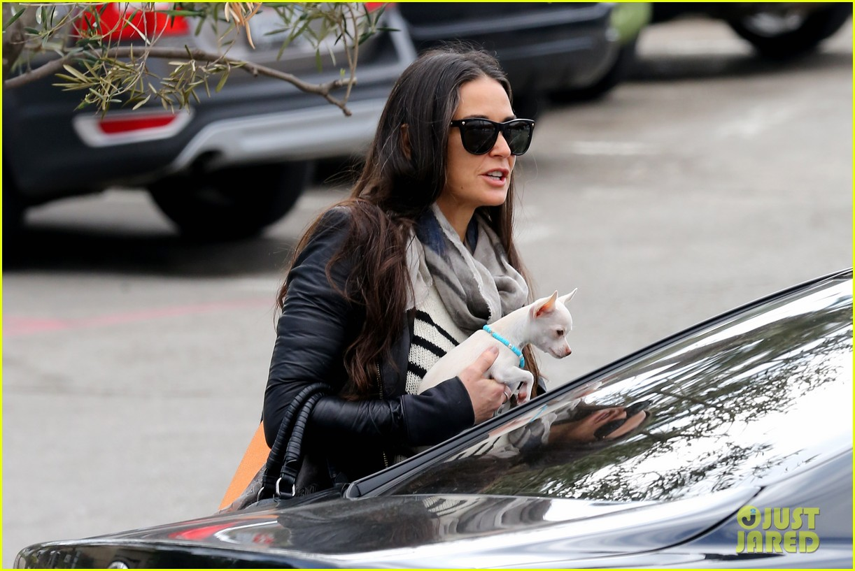 demi moore takes her tiny dog to yoga class 143051318