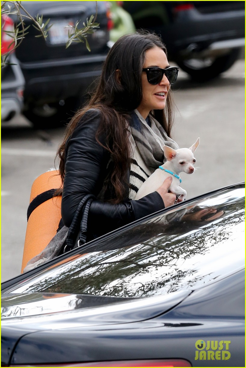 demi moore takes her tiny dog to yoga class 153051319